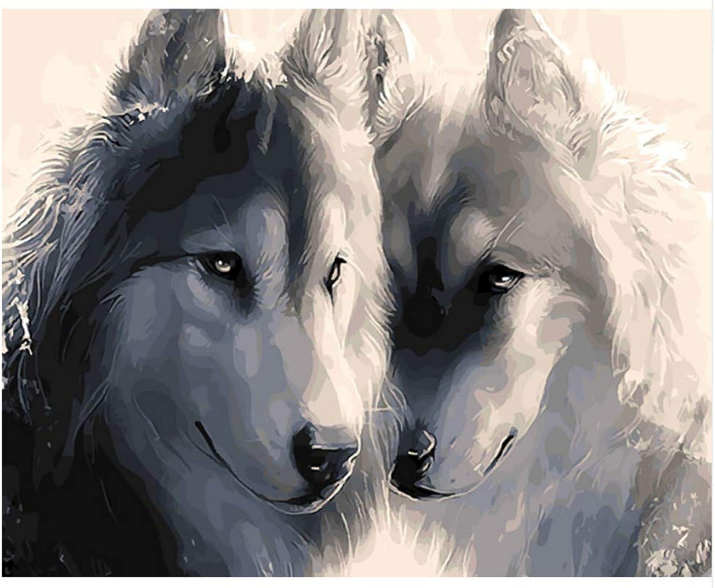 SKYTY Husky Dog Abstract Animal Dog Ölgemälde Bild Nach Anzahl Digitalbilder Hunde Bilder Färben Einzigartiges Geschenk Home Decoration 16X20 Zoll DIY Rahmen B07PR8H8WN | Deutschland
