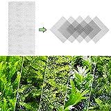 Zoom IMG-2 yeemeen 10pz piante a rete