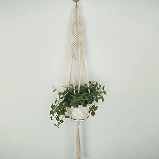 Amazon.es: armine - Jardinería: Jardín
