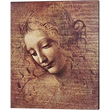 Head of a Young Woman with Tousled Hair by Leonardo Da Vinci Canvas Art Wall Picture, Gallery Wrap, 16 x 20 inches