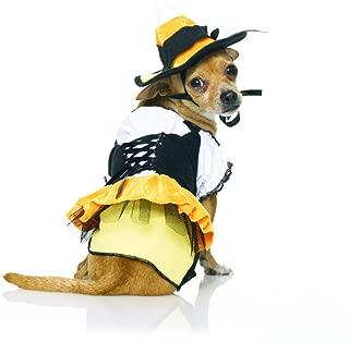 Candy Corn Witch Pet Costume - Medium