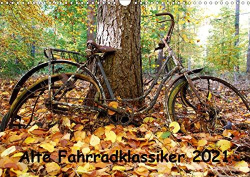 Alte Fahrradklassiker 2021 (Wandkalender 2021 DIN A3 quer)