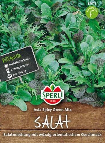 Sperli Salatmischung Asia Spicy Green Mix