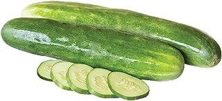 burpless beauty cucumber