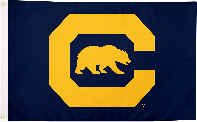 Desert Cactus University of California Berkeley 100% Polyester Indoor Outdoor 3 feet x 5 feet Flag (Flag 6)