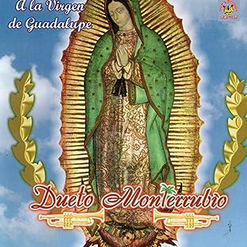 A La Virgen de Guadalupe