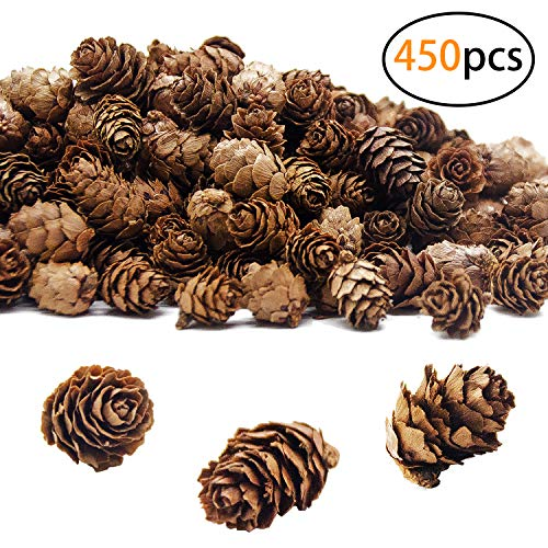 SHANGXING 450 PCS Christmas Natural Mini Pine Cones-11.28 oz Thanksgiving Pine Cones Ornaments for DIY Crafts, Home Decorations,Fall and Christmas,Wedding Decor
