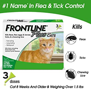cat flea and tick products