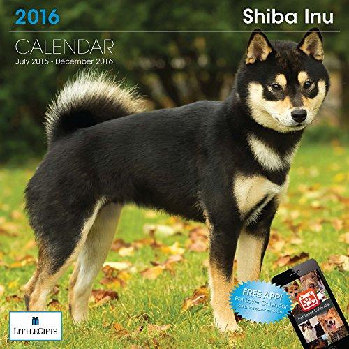 LittleGifts Shiba Inu 2016 Calendar (1261)