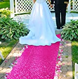 Aisle Runners for Weddings -2FTx15FT- Hot Pink Sequin Aisle Runner Fuchsia Glitter Aisle Runner Carpet Aisle Runner for Wedding Ceremony Party Prom Event (2FTx15FT, Hot Pink)