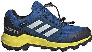 adidas outdoor Terrex GTX Kids Hiking Shoe Boot, Blue Beauty/Grey one/Shock Yellow, 12.5K Child US Little