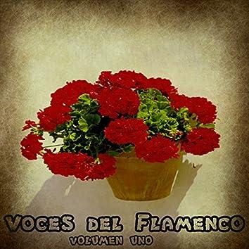 Voces del Flamenco Vol. 1