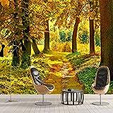 3D HD bosque de otoño hoja de arce Mural naturaleza foto papel...