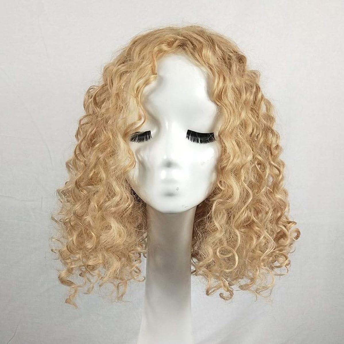 歌う温度浴室Yrattary アフリカの小さな巻き毛の爆発的な頭の繊維素材のかつら女性のファッションの美しさ日常のかつら多色オプションの女性のかつらレースのかつらロールプレイングかつら (色 : Blonde, サイズ : 20 inches)
