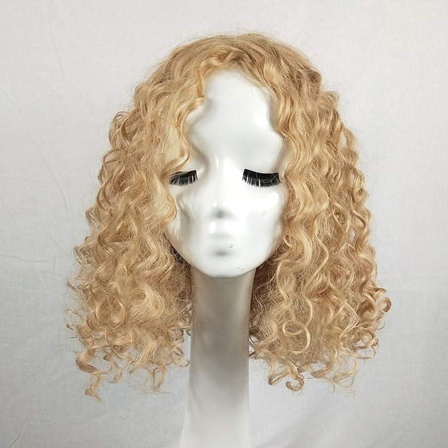 正午実際のハプニングYrattary アフリカの小さな巻き毛の爆発的な頭の繊維素材のかつら女性のファッションの美しさ日常のかつら多色オプションの女性のかつらレースのかつらロールプレイングかつら (色 : Blonde, サイズ : 20 inches)
