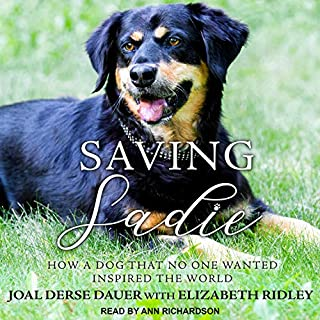 Saving Sadie audiobook cover art