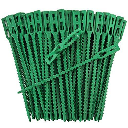 iapyx Pflanzenclips Starke stabile Pflanzenklammern extra groß für Spaliere Rosenbogen Rankhilfe etc (99)