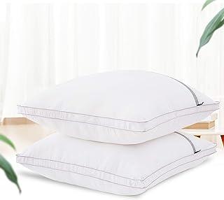 BedStory Oreillers 60x60 Lot de 2, Oreiller Moelleux mais Ferme, Coussin Blanc, Garnissage Fibre Creuse, 2 Oreillers Gonfl...