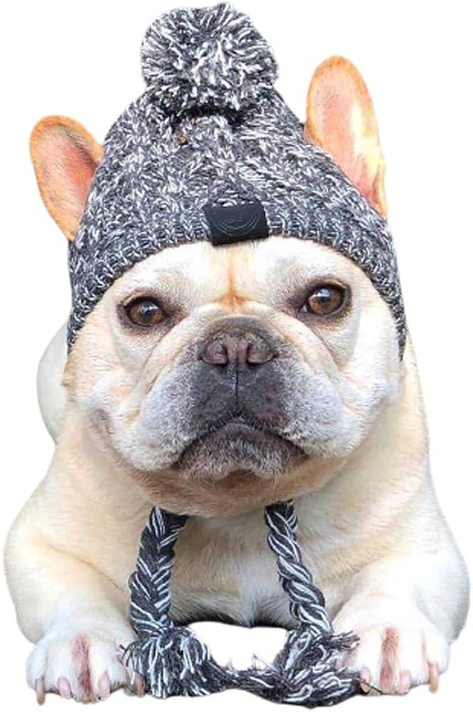 mittelgro/ße und gro/ße Hunde niedliches Haustierkost/üm Wollm/ütze f/ür kleine snake cat Hundem/ütze Strickm/ütze Winddicht M/ütze Winter Haustier Warm Outfit