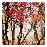Bilderwelten Fotomural - Japan in the autumn - Mural cuadrado papel pintado...