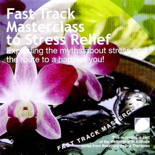 Fast Track Masterclass to Stress Relief  By  cover art