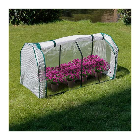 """Lynslim mini greenhouse, 48"""" x24x 21. 6"""",pe cover,large zipper doors,indoor outdoor garden green house flowerpot cover 4 high quality:environmentally friendly pe material, waterproof and sun-drying, good thermal insulation effect, non-toxic and tasteless,strong and durable. Excellent light penetration rate ensures adequate sunlight and heat preservation. It will considerably extend your planting time. Mini sised greenhouse: 48""""x24x""""21. 6"""", enough space for your houseplant ,plant pots & seed beds. Zipped doors: zipped doors is easy to access as well as good ventilation and humidity."""