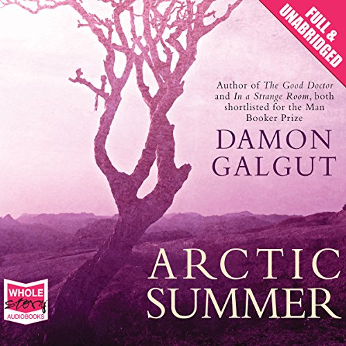 Arctic Summer cover art