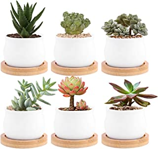 White Ceramic Succulent Plant Pots, Jyukan 2.4 Inch Small Succulent Cactus Planter with Drainage Hole, Bamboo Tray, Set of 6