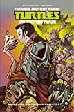 L'histoire secrète du clan Foot - Les Tortues Ninja - TMNT, T0.5 - Format Kindle - 9,99 €