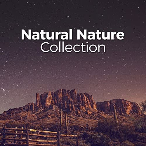 Nature Sounds Nature Music