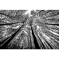 黒と白の自然の風景 - ジグソーパズル500-6000個人子供家族エンターテインメント、卒業ギフト教育玩具オオカミパズルイーグルタングラム 0122 (Color : A, Size : 5000 pieces)