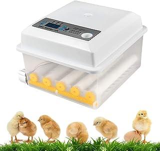 InLoveArts Incubadora Digital de Huevos Incubadora para Múltiples Tamaños de Huevos 16 Huevos Uso Doméstico, Control de Temperatura y Giro Automático