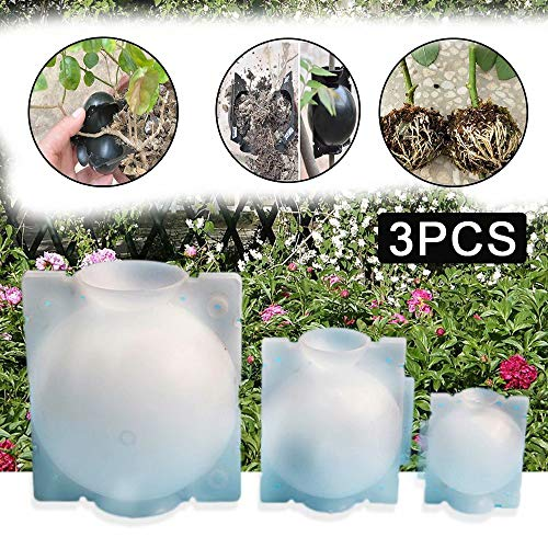 JRYⓇ 3 PCS-Propagatoren für Pflanzen, Wiederverwendbare Pflanzenwurzelvorrichtung Schwarzer Hochdruck-Vermehrungsball zum Pfropfen von Wurzeln Wachsende Zucht Asexuelle Fortpflanzungsausrüstung