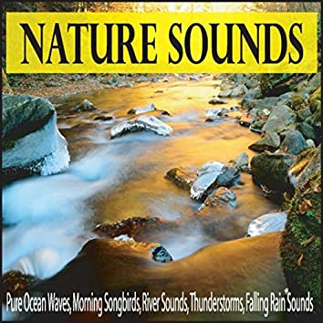 Nature Sounds: Pure Ocean Waves, Morning Songbirds, River Sounds, Thunderstorms, Falling Rain Sounds