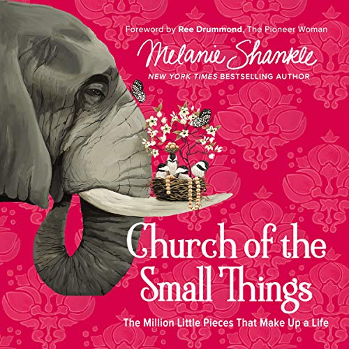 Church of the Small Things: Audio Bible Studies audiobook cover art