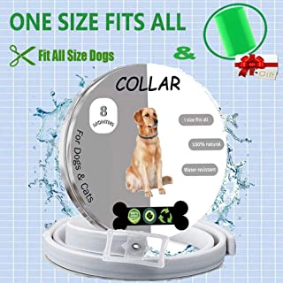 Petty Helper Flea and Tick Collar for Dogs Cats | 8 Months Protection | Hypoallergenic & Waterproof & Adjustable Design | 100% Natural Essential Oil flea Collar with Flea Comb (Gray) (Gray) (Grey)