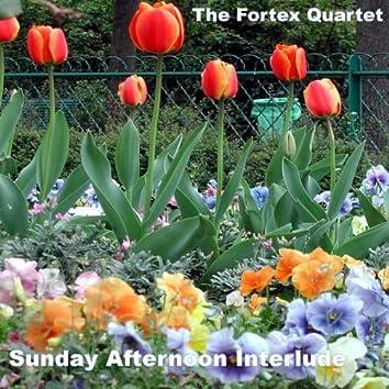 Sunday Interlude