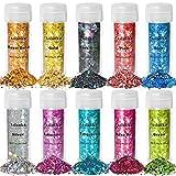 Aslanka Paillettes per Unghie, Set glitter 10 colori, 100g Chunky Glitter Olografico per V...