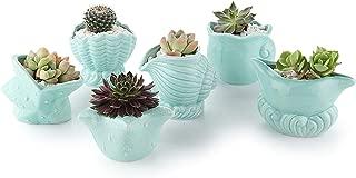 T4U 2.5 Inch Ceramic Succulent Pot, Cute Blue Seashell Succulent Planter for Samll Plants, Perfect for Home Office Decor Set of 6