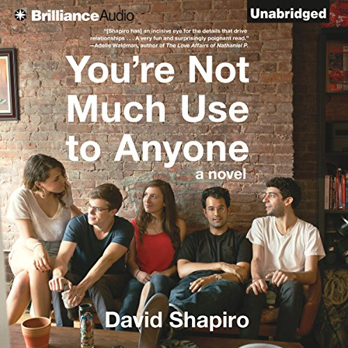 You're Not Much Use to Anyone audiobook cover art