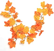 Amazon Com Fall Decorations Clearance