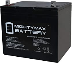 Mighty Max Battery 12V 75Ah SLA Battery for Wayne ESP25 Back-Up Pump Brand Product