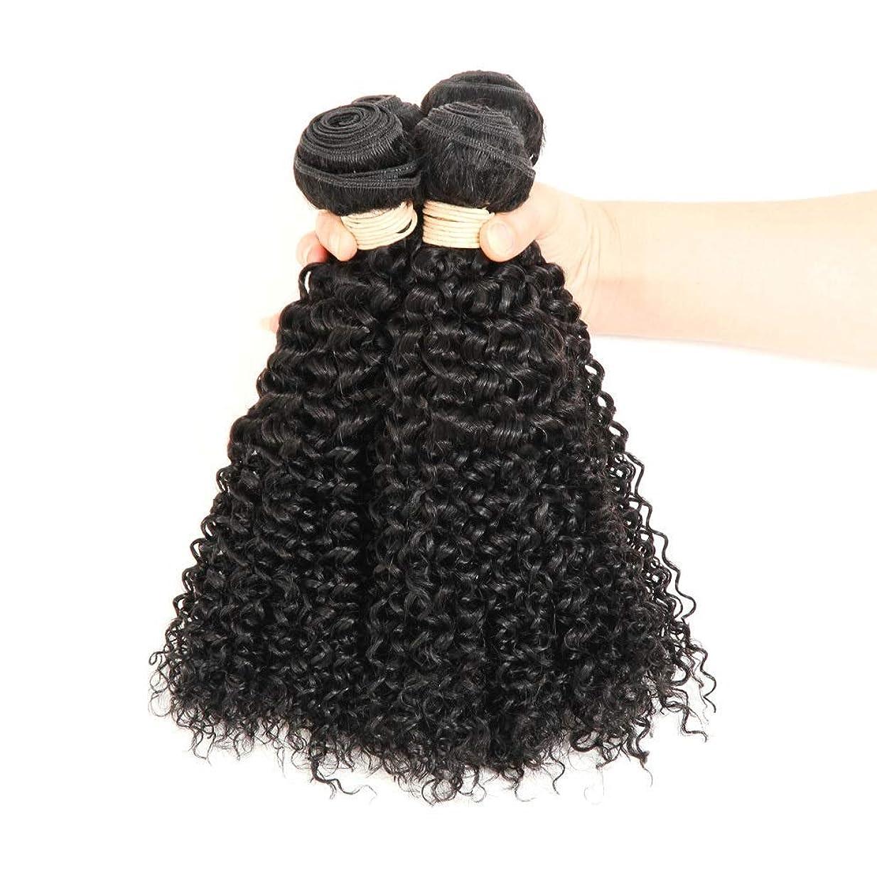 の頭の上ソケット地下室BOBIDYEE ブラジルのバージン人間の髪の毛の束ブラジルの変態カーリー織り人毛ナチュラルブラック色16-22インチ(100 +/- 5g)/ pc 1バンドルロールプレイングかつら女性の自然なかつら (色 : 黒, サイズ : 20 inch)