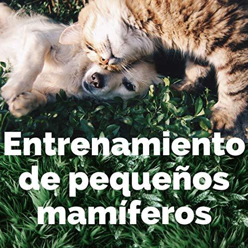 entrenamiento de pequeños mamiferos (Spanish Edition)