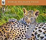 Baby Animals WWF 2022 Wall Calendar