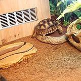 LanLan Estera de coo de Palma con Talla de 60 * 40 CM, Suministros de Reptiles de Animal doméstico, Pet Natural Coconut Mat Reptile Box Decoration