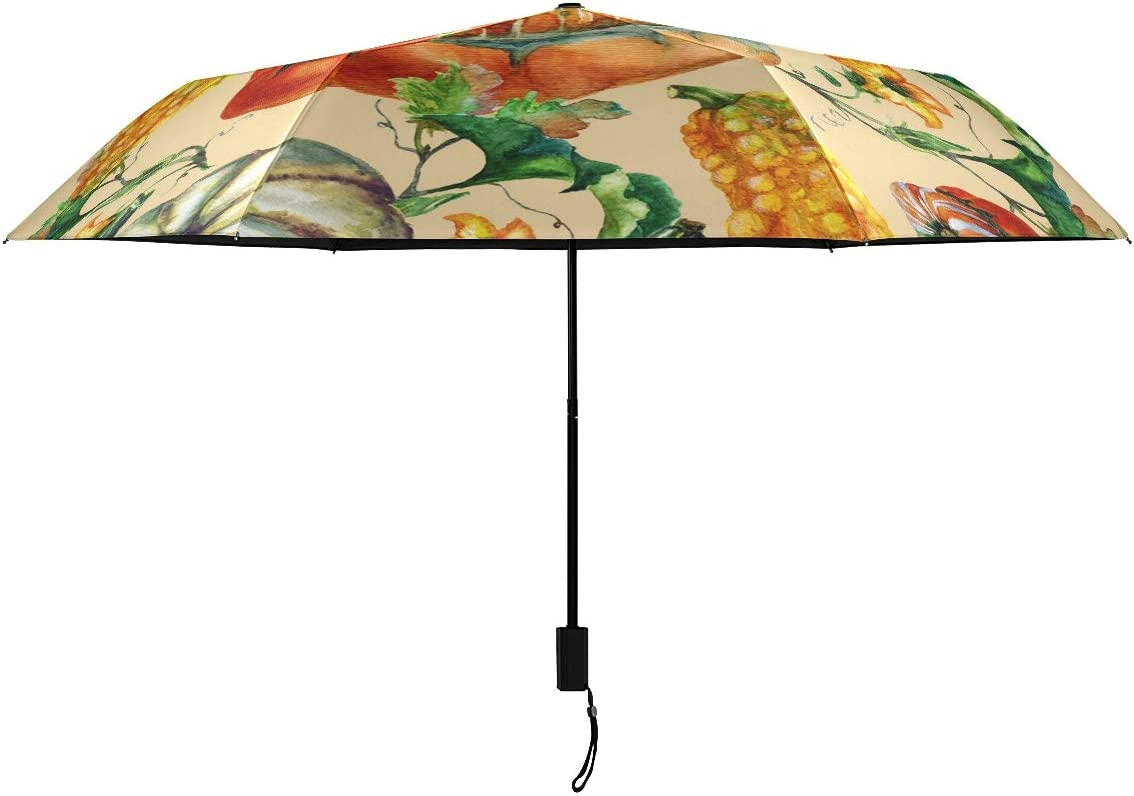Colorful Pumpkin discount Plant Parasol Umbrella Ladies Girl Woman M Al sold out. for