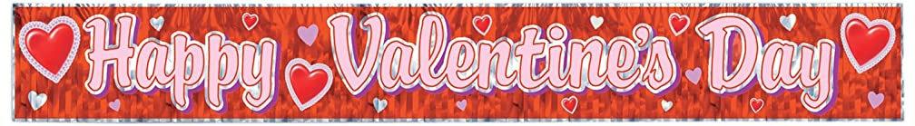 Metallic Happy Valentine's Day Fringe Banner Party Accessory (1 count) (1/Pkg)