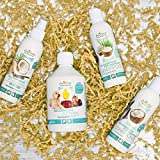 Aniforte Fellharmonie Shampoo mit Kokosöl-Extrakt & Aloe Vera 200ml Hundeshampoo Kokos-Shampoo – Naturprodukt für Hunde - 2