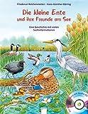 Die kleine Ente und ihre Freunde am See: Eine Geschichte mit vielen Sachinformationen: - Friederun Reichenstetter